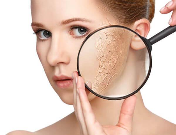 Best Ingredients For Dry Skin